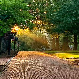 Brick path on the horseshoe with sun streaming down through the trees.