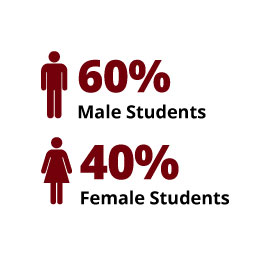 Infographic: 60% Male Students, 40% Female Students