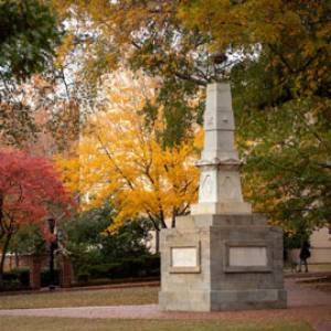 campus of the University of South Carolina with fall leaves