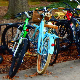 bikes parked at rack